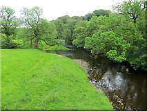 SD7152 : Confluence of River Hodder and Croasdale Brook by Philip Platt