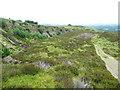 SE0809 : Disused quarry, Laggin Plat by Humphrey Bolton