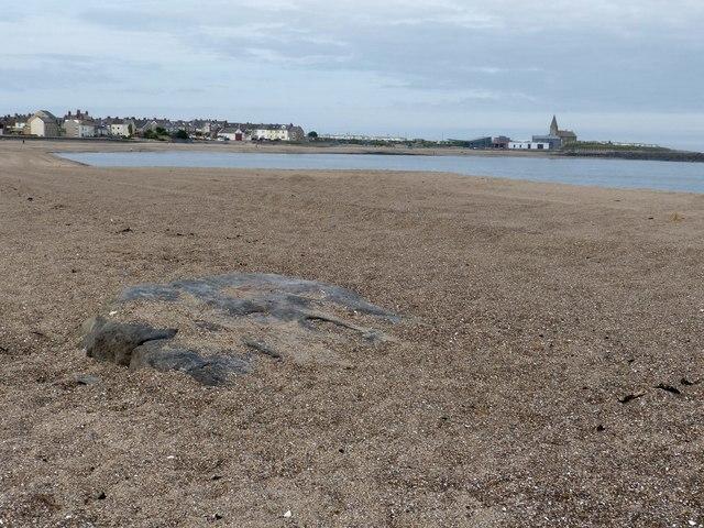 The Hunkleton Stone on Newbiggin Beach