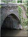 SK1705 : Hopwas Wood Bridge by Alan Murray-Rust