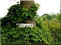 TL8854 : Shrub Farm sign by Geographer