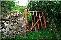 J3452 : BWC gate near Ballynahinch by Rossographer