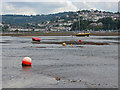 SX9372 : Falling tide, River Teign by Alan Hunt
