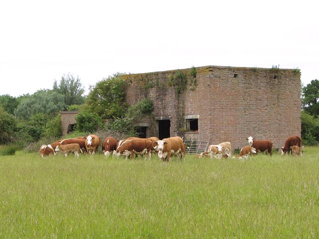 The former Communal site A of RAF Shipdham