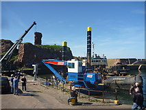 NT6779 : Coastal East Lothian : Spectators At Victoria Harbour, Dunbar by Richard West