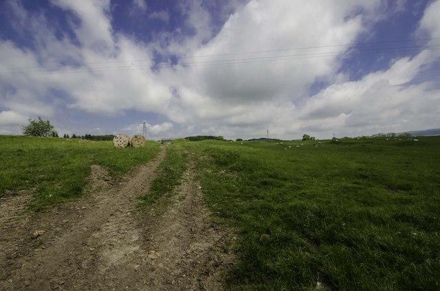 Fields by Jordieland Farm