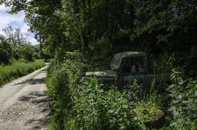 Rover Trap