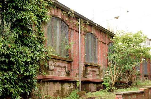 The Tropical Ravine, Botanic Gardens, Belfast - June 2014(1)