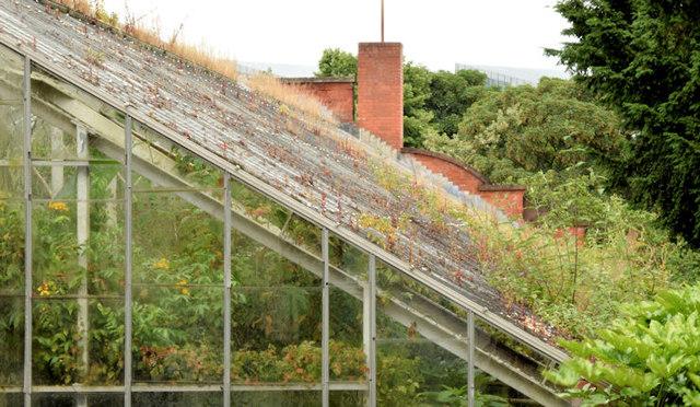 The Tropical Ravine, Botanic Gardens, Belfast - June 2014(3)