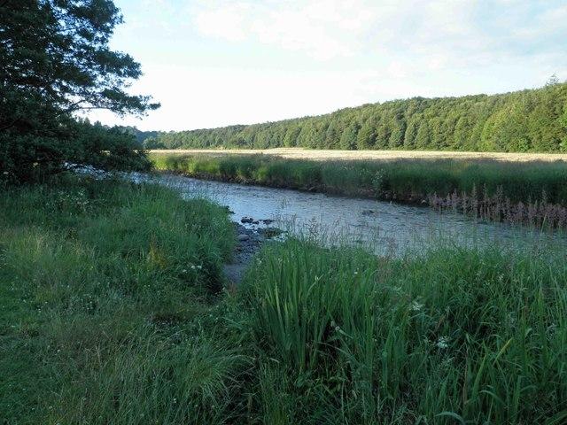 River Derwent Cockermouth