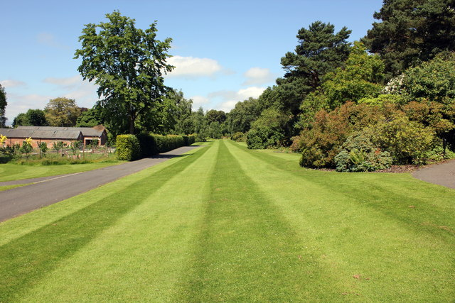 A lawn at Ness