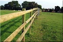 SP6633 : Paddock by the Bernwood Jubilee Way by Philip Jeffrey