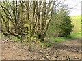 ST4601 : Signpost on Wessex Ridgeway by Derek Harper