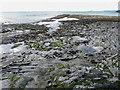 SN5781 : Rock Strata, Aberystwyth, Ceredigion by Christine Matthews