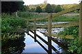 SP8900 : Warren Water, Missenden Abbey by Nigel Mykura