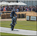 SU8808 : Motor Cycle Display, Goodwood Festival of Speed 2014 by Christine Matthews