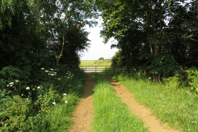 Gate on the bridleway
