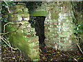 TG1427 : Rare pillbox - blast wall by Evelyn Simak