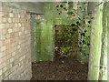 TG1427 : Rare pillbox - interior by Evelyn Simak