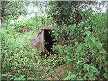 TM4077 : Air raid shelter on Site 10 by Evelyn Simak