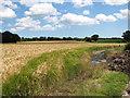 TM4077 : Barley crop field near Holton village by Evelyn Simak