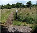 SO7805 : Path through Churchend Orchard, Eastington by Jaggery