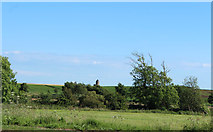 NS3628 : Old Windmill at Monkton by Billy McCrorie