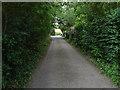 SU8279 : Star Lane, Knowl Hill by Alan Hunt