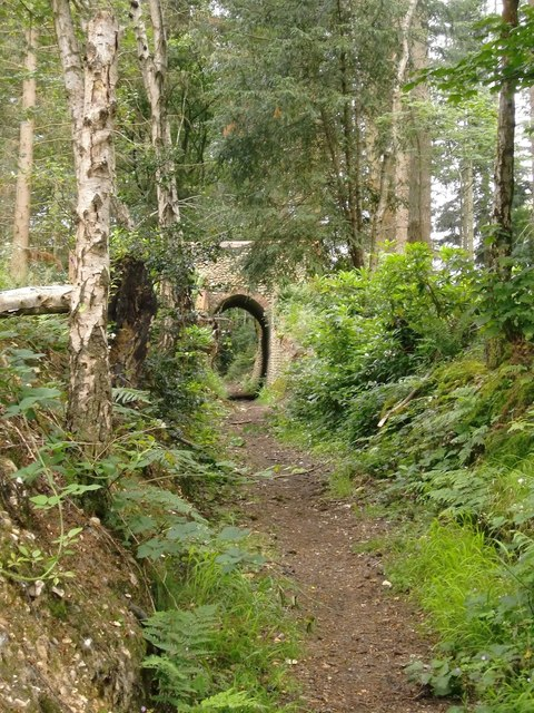 Bridleway with arch, Briary Hill, Dick Focks Common
