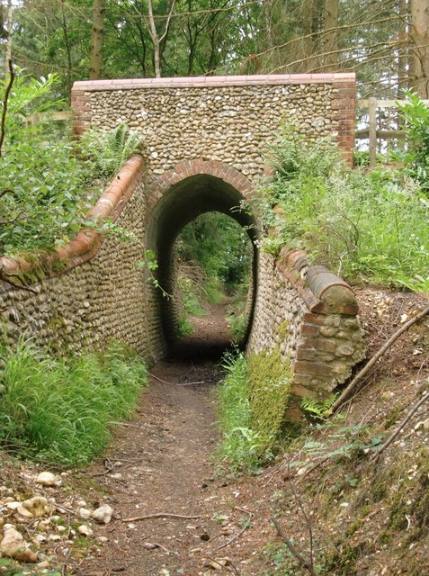 Bridleway and arch, Briary Hill, Dick Focks Common