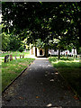 TM3377 : Path to St.Margaret of Antioch Church by Adrian Cable