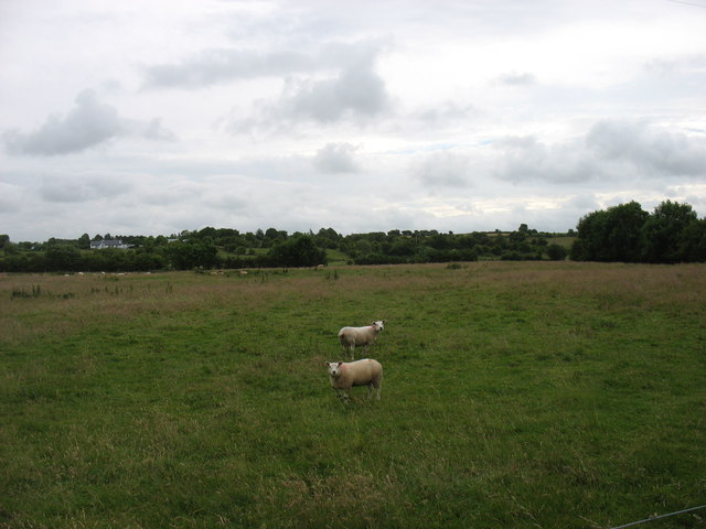 Country south of Kiltimagh
