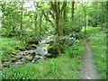 SE0024 : Permissive path alongside Cragg Brook by Humphrey Bolton