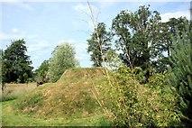 SO3656 : The Spiral Mound, Westonbury Mill by Des Blenkinsopp