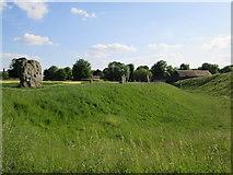 SU1070 : Avebury  Stone  Circle  (part  of ) by Martin Dawes