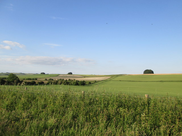 Over the valley  to  Avebury  Down
