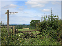 SO4155 : Bidney Farm Sign by Des Blenkinsopp