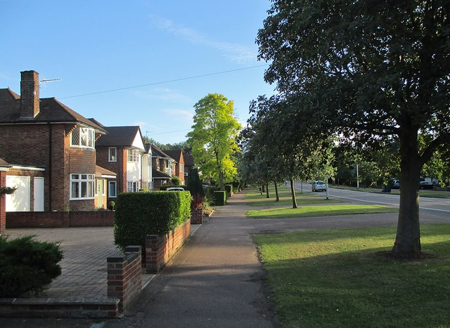 A summer evening on Fendon Road by John Sutton