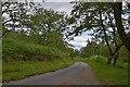NN0469 : Road through woodland by Nigel Brown