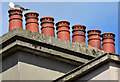 J3373 : Chimney pots, gull and nest, Lower Crescent, Belfast (July 2014) by Albert Bridge