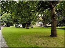 SE5952 : Yorkshire Museum Gardens, The Hospitium by David Dixon
