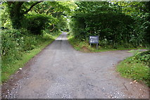 SW6032 : Tracks in the Godolphin Estate by Bill Boaden