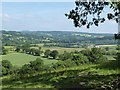 SX8779 : View from minor road to the South of Chudleigh (1) by Derek Voller