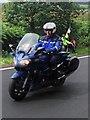 SK2495 : Gendarme in Barnsley??? by Steve  Fareham