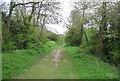 TR1334 : Royal Military Canal Path by N Chadwick