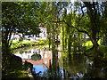 SK6647 : Mill pond, Lowdham Mill by Richard Vince