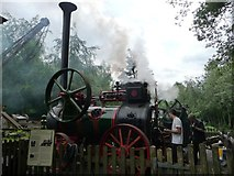 SU8529 : Portable steam engine interpreted at Hollycombe by Christine Johnstone