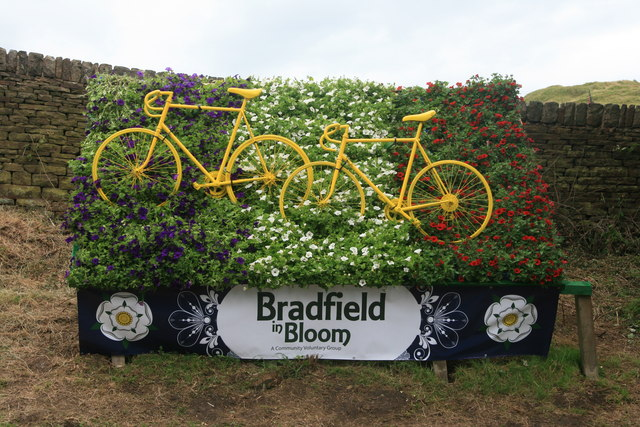 Bradfield in Bloom ready for 'Le Grand Départ'