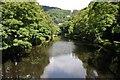 SK2957 : River Derwent at Matlock Bath by Philip Halling