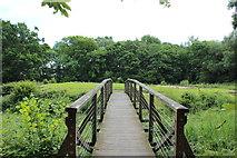 NY0265 : Bridge to the Old Caerlaverock Castle by Billy McCrorie